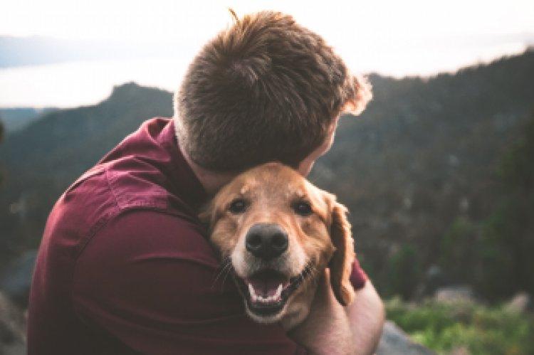 Geriausio žmogaus draugo diena: 5 išmanūs patarimai auginantiems šunis